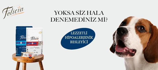 Felicia Genel Tanıtım Banneri