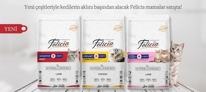 Felicia Yeni Kedi Maması Çeşitleri