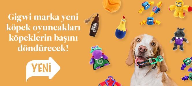 Gigwi Köpek Oyuncakları Yeni Çeşitler