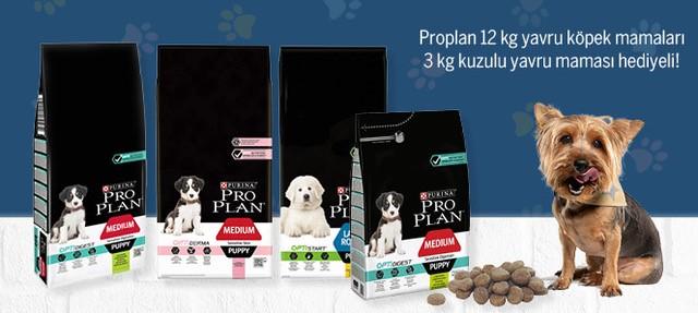 Proplan 12 KG Köpek Maması 3 Kg Hediyeli