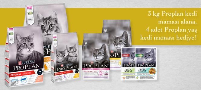 Proplan 3 Kg Kedi Maması 4 Konserve Hediye