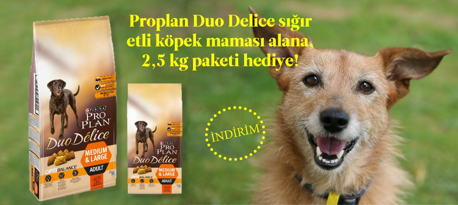 Proplan Duodelice Köpek Maması Mama Hediyeli