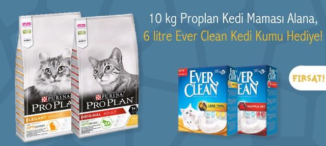 Proplan Kedi Maması Everclean Hediyeli