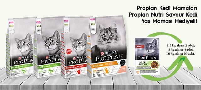 Proplan Kedi Maması Yaş Kedi Maması Hediyeli