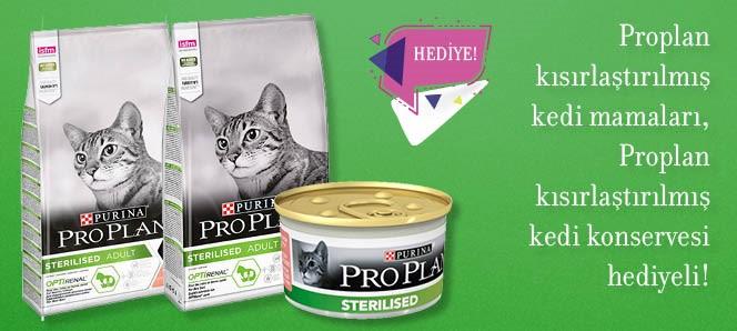 Proplan Kısırlaştırılmış Kedi Maması Hediyeli