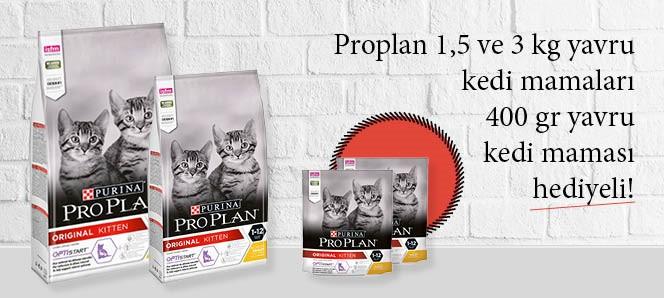 Proplan Yavru Kedi Maması 400 Gr Hediyeli