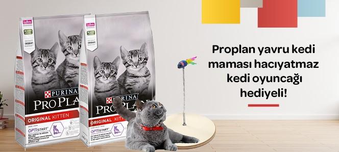 Proplan Yavru Kedi Maması Hacıyatmaz Hediyeli