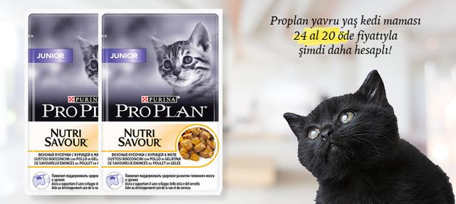 Proplan Yaş Yavru Kedi Maması 24 Al 20 Öde