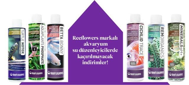 Reeflowers Akvaryum Su Düzenleyiciler