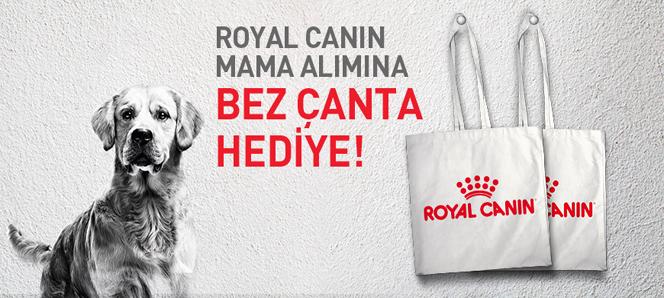 Royal Canin mama Bez Çanta Hediyeli
