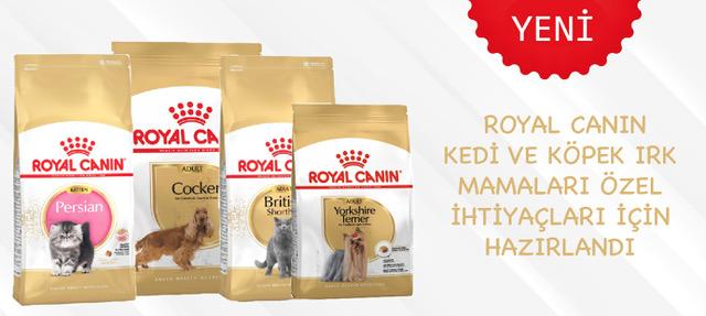 Royal Canin Kedi Köpek Mamaları Yeni