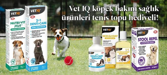 Vet IQ Köpek Bakım Ürünleri Top Hediyeli