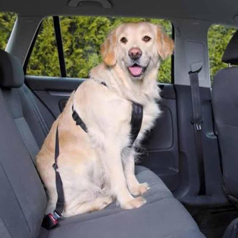 Trixie Emniyet Kemerli Köpek Göğüs Tasması Large | 141,65 TL