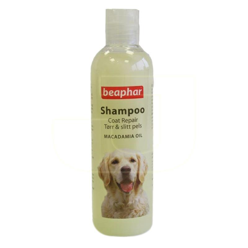 Beaphar Macadamia Yağlı Kıtık Giderici Köpek Şampuanı 250 ml | 46,67 TL