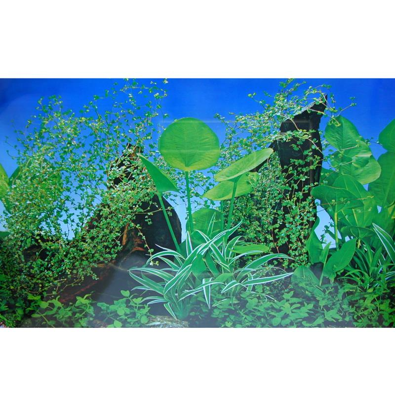 Ti-Sert Akvaryum Posteri Yeşil Bitki Desenli 50x100 cm | 6,30 TL