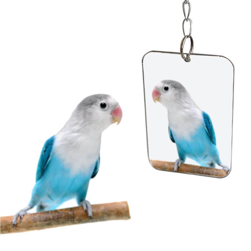 Pet Products Metal Kuş Aynası 7x8x25 cm   7,97 TL